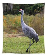 Sandhill In The Grass With Wildflowers Tapestry
