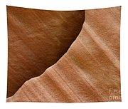 Sandstone Detail Tapestry