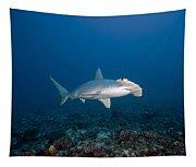 Scalloped Hammerhead Shark Tapestry