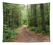 Scenic Walk Tapestry