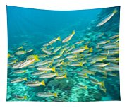 Schooling Bigeye Snappers Tapestry