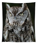 Screech Owl Tapestry