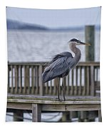 Scruffy Heron Tapestry