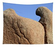 Sculpted Rock Tapestry