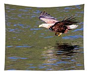 Sea Eagle's Water Landing Tapestry