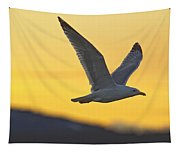 Seagull Flying At Dusk With Sunset Tapestry