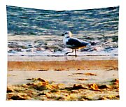 Seagull On Virginia Beach At Dawn Tapestry