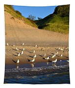 Seagulls At The Bowl Tapestry