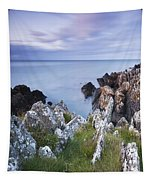 Seascape From Coast Of Clogherhead Tapestry