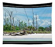 Secluded Beach Tapestry