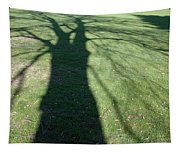 Shadow Of A Tree On Green Grass Tapestry