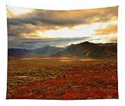 Shaft Of Sunlight Hitting The Fall Tapestry