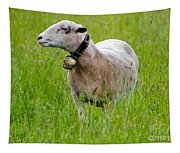 Sheep With A Bell Tapestry