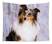 Shetland Sheepdog Portrait Of A Dog Tapestry