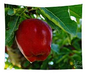 Shiny Red And Ripe  Tapestry