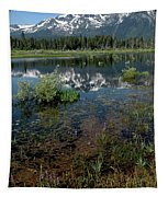 Shore Reflections Of Mt Tallac Tapestry