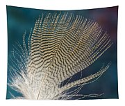 Wood Duck Feather Tapestry