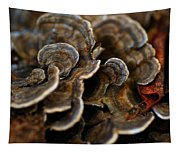 Shrooms Abstracted Tapestry