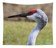 Sideways Sandhill Crane Tapestry