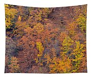 Sierra Nevada National Park Tapestry