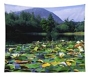Silent Valley, Mourne Mountains Tapestry