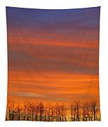 Silhouette Of Trees Against Sunset Tapestry