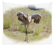 Silly Sandhill Crane Chick Tapestry