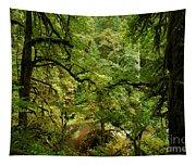 Silver Falls Rainforest Tapestry