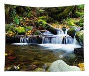 Simple Pools  Tapestry