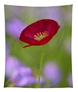 Single Red Poppy  Tapestry
