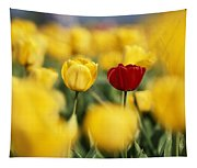 Single Red Tulip Among Yellow Tulips Tapestry