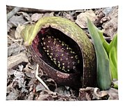 Skunk Cabbage Baby Aka  Polecat Weed Tapestry