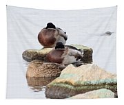 Sleeping Mallards Tapestry
