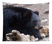 Sleepy Black Bear Tapestry