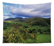Slieve Bearnagh, Mourne Mountains, Co Tapestry