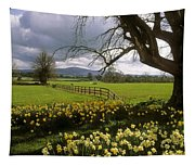 Slievenamon, Ardsallagh, Co Tipperary Tapestry