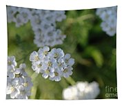 Small White Wildflowers  Tapestry