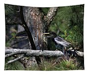 Snakebird At The Rookery Tapestry