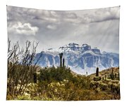 Snow Atop The Superstitions Tapestry