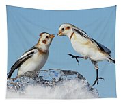 Snow Buntings And Ice Tapestry