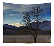 Snow-capped Monte Rosa Tapestry
