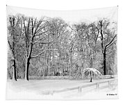 Snow Covered Tapestry