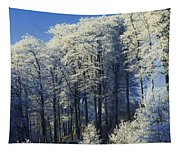 Snow Covered Trees In A Forest, County Tapestry