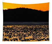 Snow Geese Sunrise Tapestry