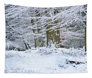 Snow Magic Tapestry