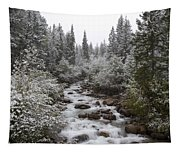 Snowy Foliage Along Stream In Autumn Tapestry