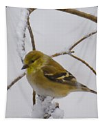 Snowy Yellow Finch Tapestry