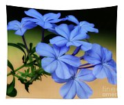 Soft Blue Plumbago  Tapestry