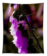 Soft Cascade Tapestry
