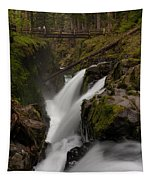 Sol Duc Flow Tapestry